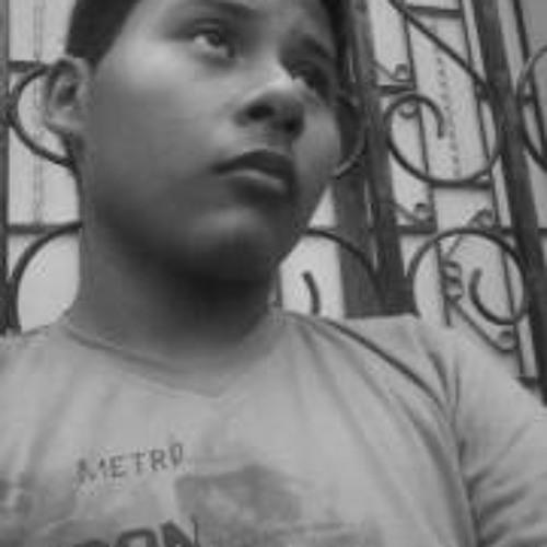 Ricardo Ernesto Santos's avatar