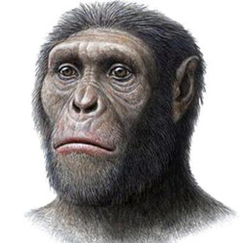 Lipthecus's avatar