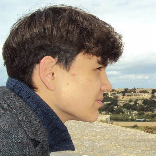 Elo Schmidt's avatar