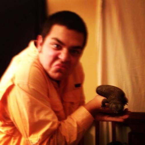 Miguel Bornio's avatar