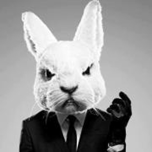 Crazy Bunny's avatar