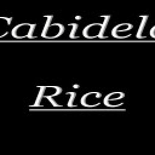 Cabidela Rice's avatar