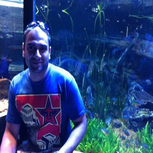 mdesilva80@hotmail.co.uk's avatar