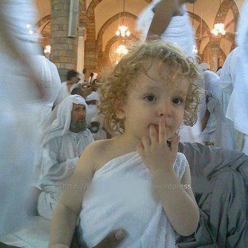 mohamad mshaly's avatar