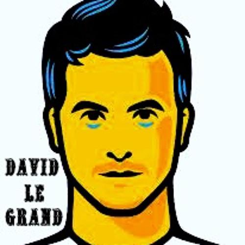 DAVIDLEGRAND's avatar