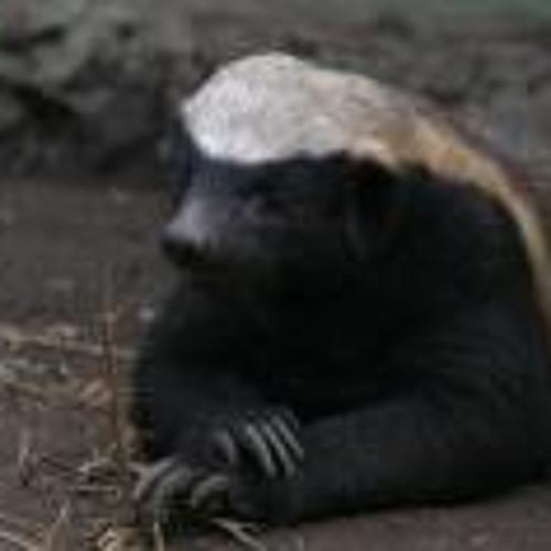 Graidon Mabson's avatar