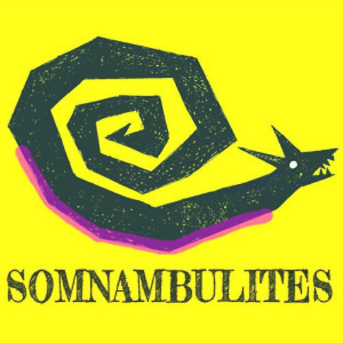 Les Somnambulites's avatar