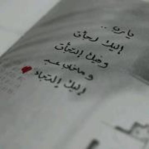 Shosha M. Ahmed's avatar