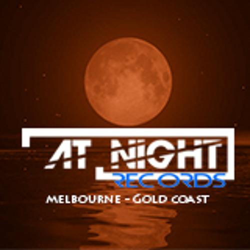 At Night Records's avatar