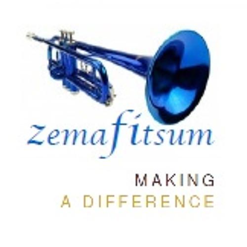 ZemaFitsum's avatar