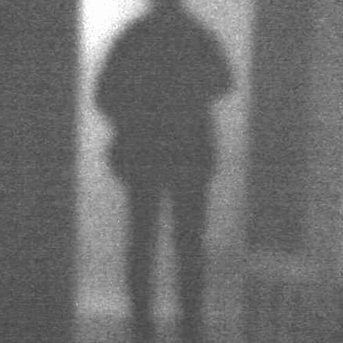Tilo Stahl's avatar