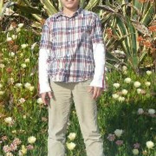 Luis Esteves 8's avatar