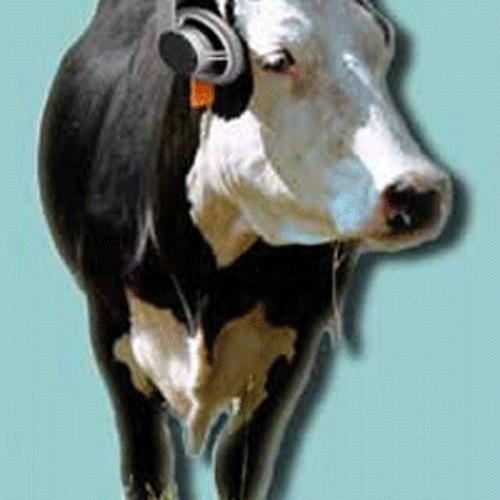 quintano's avatar