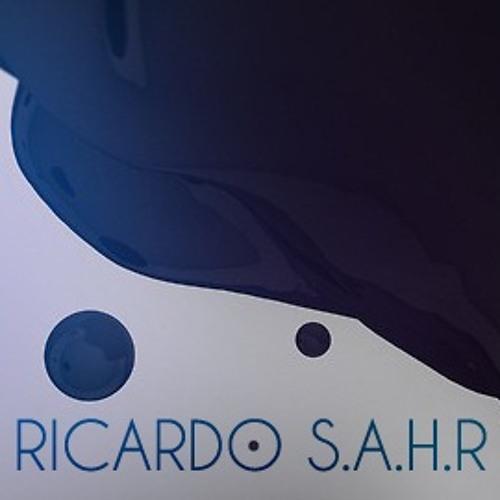 Ricardo S.A.H.R's avatar