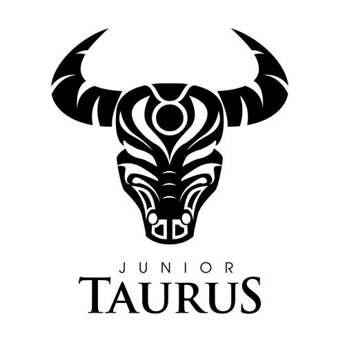 Junior Taurus ft Lady Zamar-Praising You(snippet)