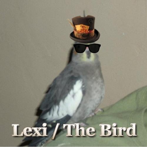 Lexi Cunningham's avatar