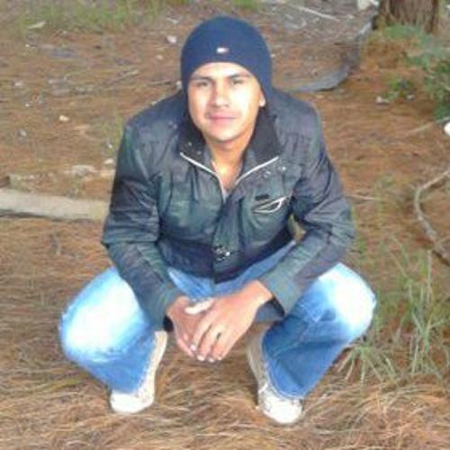 Hans Gallegos's avatar