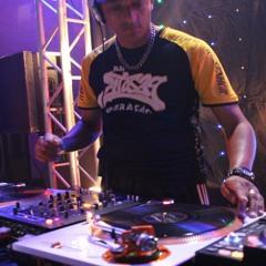 DJ Rogerio Diniz (DiniX)