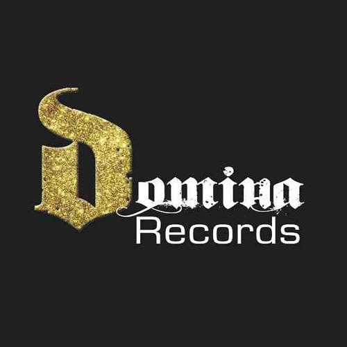 Domina Records's avatar