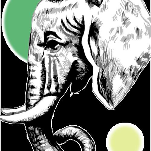 Elephant Eyes's avatar