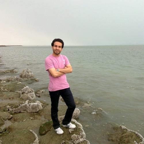 Meisam Ebrahimpour's avatar