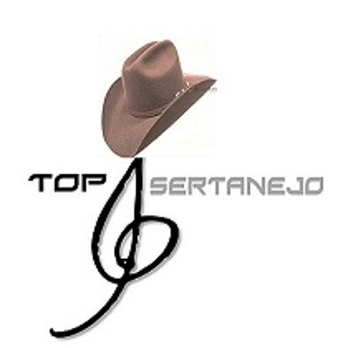 Top Sertanejo's avatar