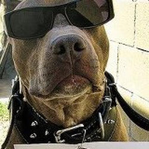 biggdoggydogg's avatar