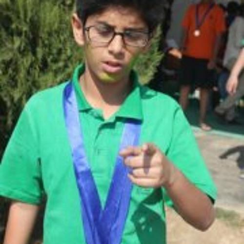 Omar Lutfullah's avatar
