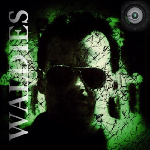 waldiES's avatar