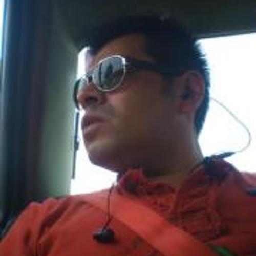 Carlos Zuñiga Hernandez's avatar