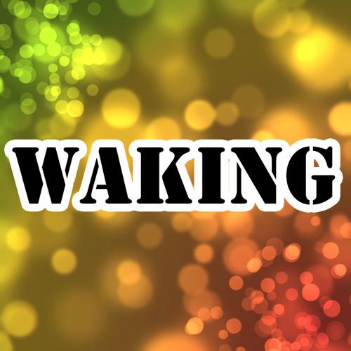 waking03's avatar