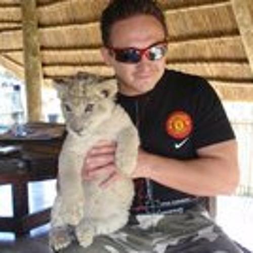 Vadim Detkov's avatar