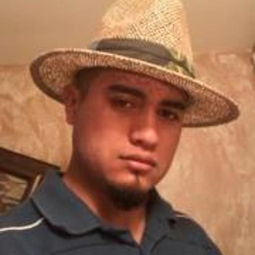 Ricardo Partida Navarro's avatar