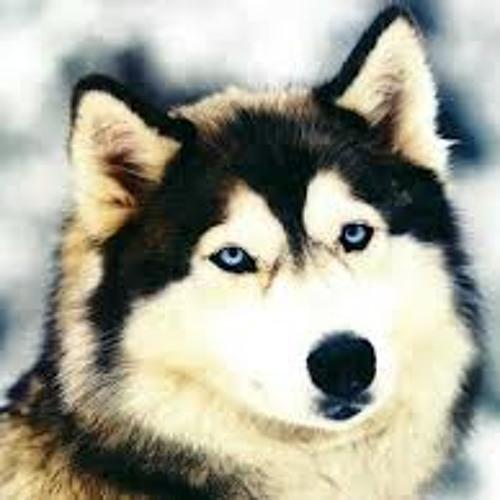 Aijscha's avatar