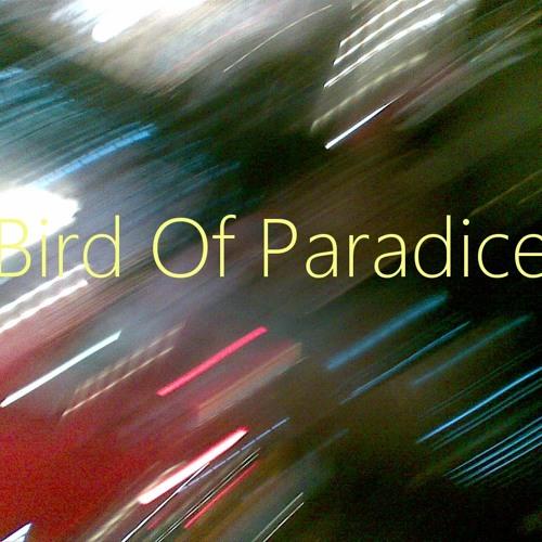 Bird Of Paradice's avatar