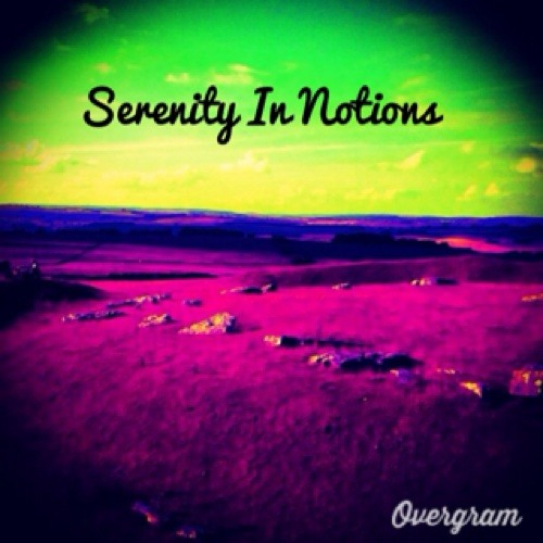 Serenity In Notions (SIN)'s avatar