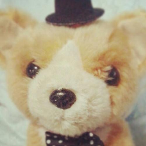 cloudishe's avatar