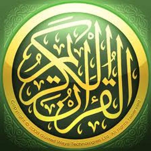 Amr Ans's avatar