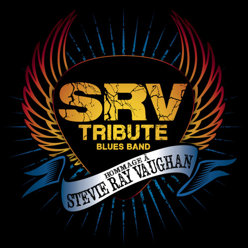 SRV Tribute Blues Band's avatar