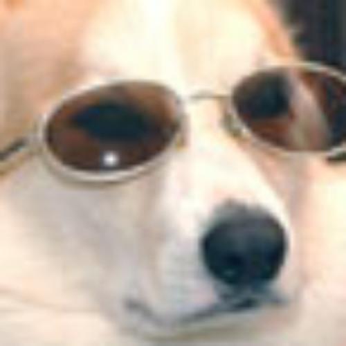 Lil Corgi's avatar