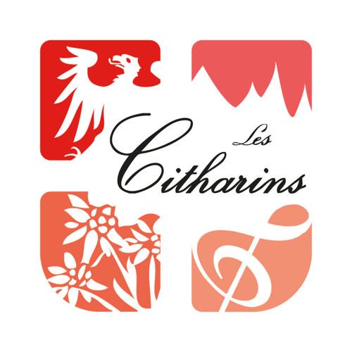 Les Citharins's avatar