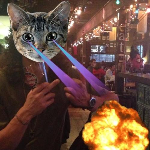 Tad Morin's avatar