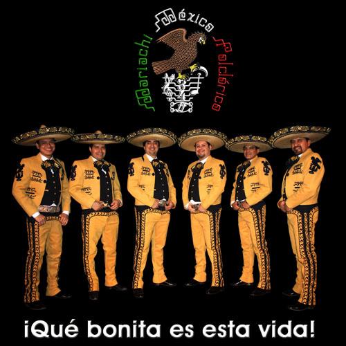 MariachiMéxicoFolclórico's avatar