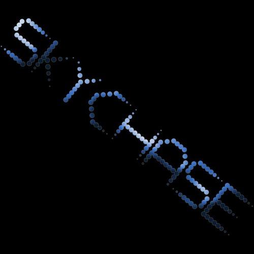 skychaseofficial's avatar