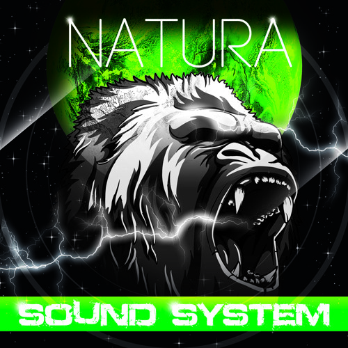 Natura Soundsystem's avatar
