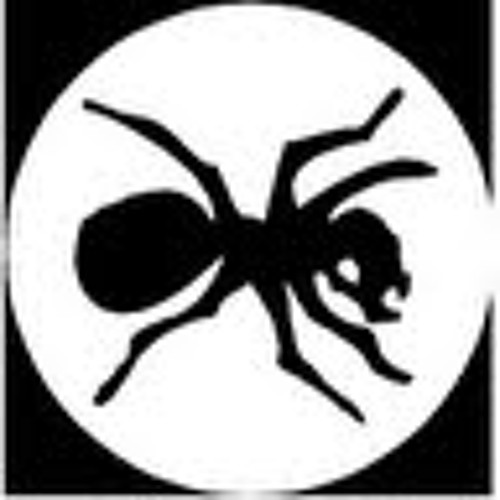 Pascal M. 1's avatar
