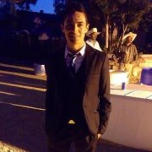 Silvestre Luna Jr.'s avatar