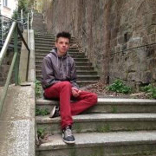 Domíno Picek's avatar
