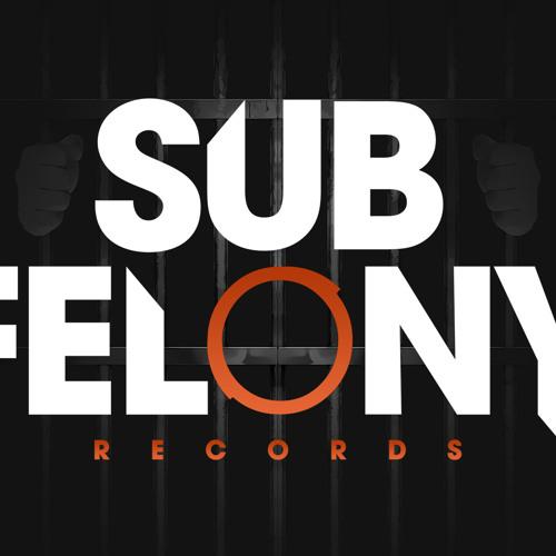 SUB FELONY RECORDS's avatar