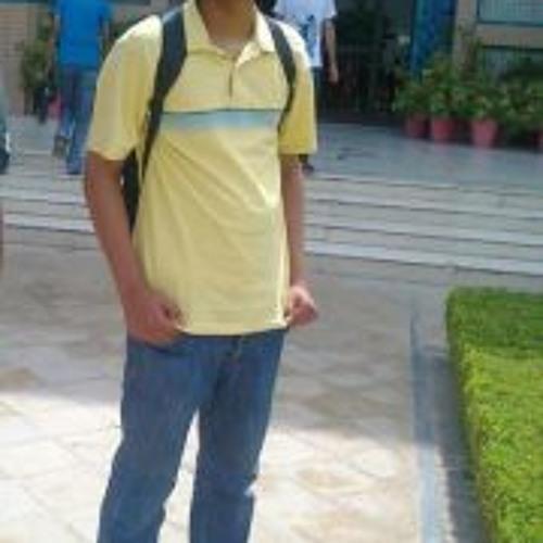 Sajjad Ahmed Niazi's avatar
